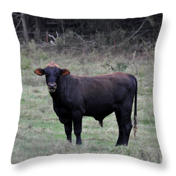 Brutus Throw Pillow by Jan Amiss Photography
