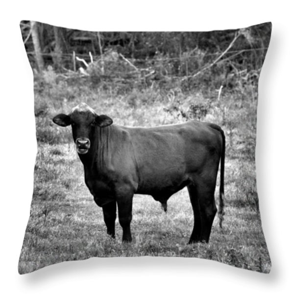 Brutus2 Throw Pillow by Jan Amiss Photography