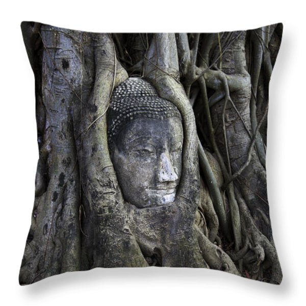 Buddha Head in Tree Throw Pillow by Adrian Evans