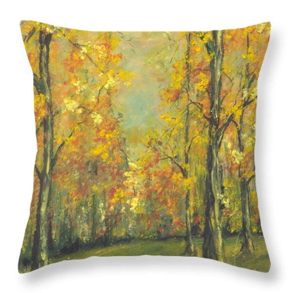 Buffalo River National Park Study 2 Throw Pillow by Robin Miller-Bookhout