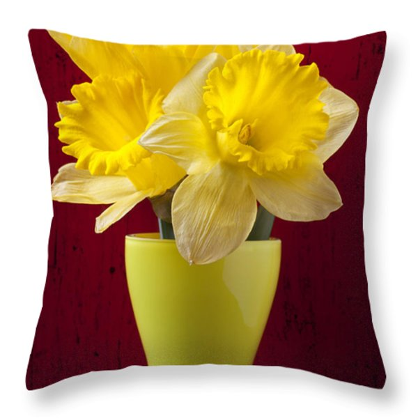 Bunch Of Daffodils Throw Pillow by Garry Gay