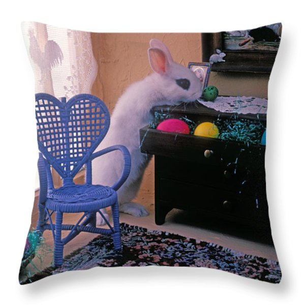 Bunny in small room Throw Pillow by Garry Gay