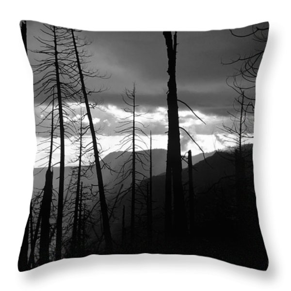 Burnt Forest - Yosemite Throw Pillow by Charmian Vistaunet