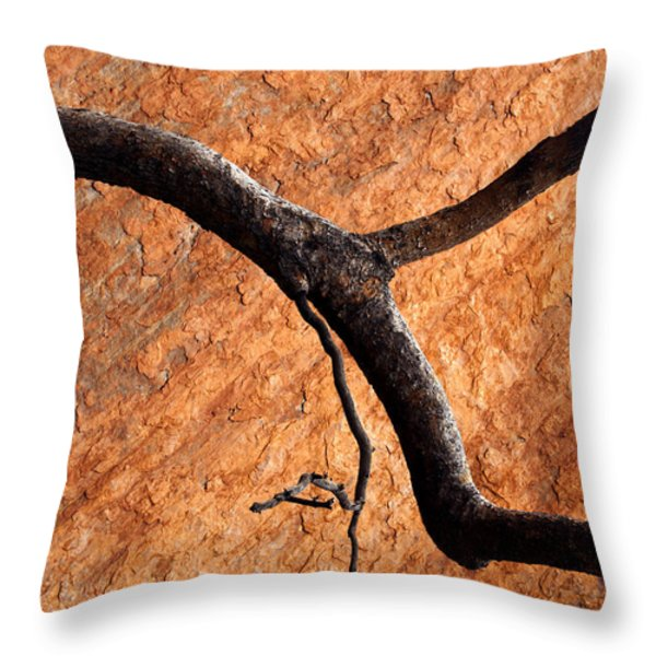 Burnt Orange Throw Pillow by Mike  Dawson