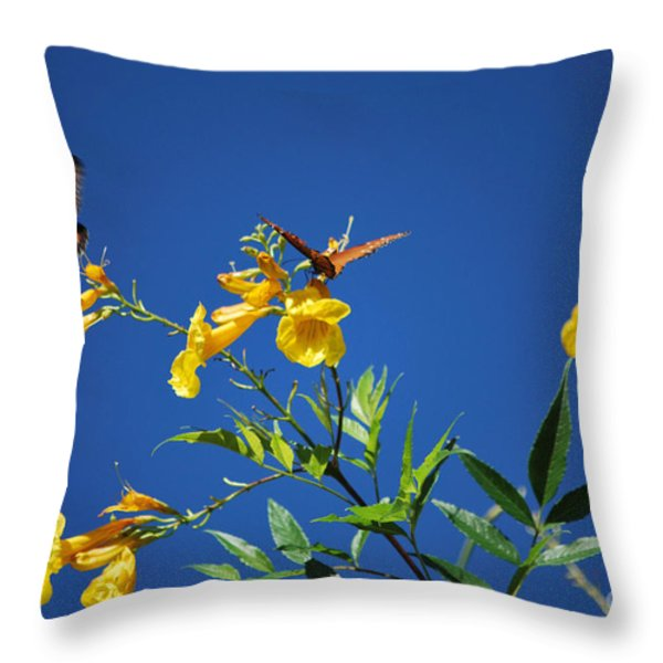 Butterfly in the Sonoran Desert Musuem Throw Pillow by Donna Van Vlack