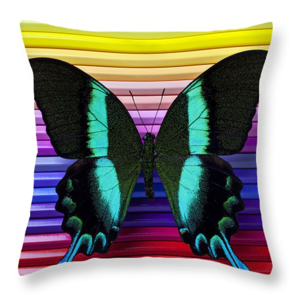 Butterfly On Colored Pencils Throw Pillow by Garry Gay