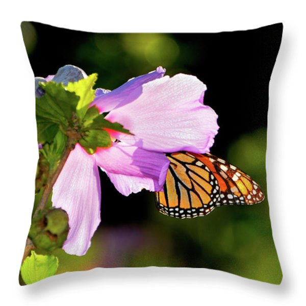 Butterfly Sunset Throw Pillow by Betty LaRue