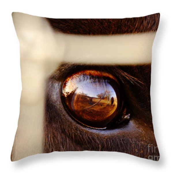 Caged Buffalo Reflects Throw Pillow by Robert Frederick
