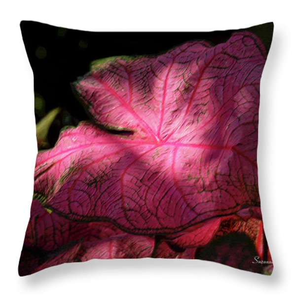 Caladium Mystery Throw Pillow by Suzanne Gaff