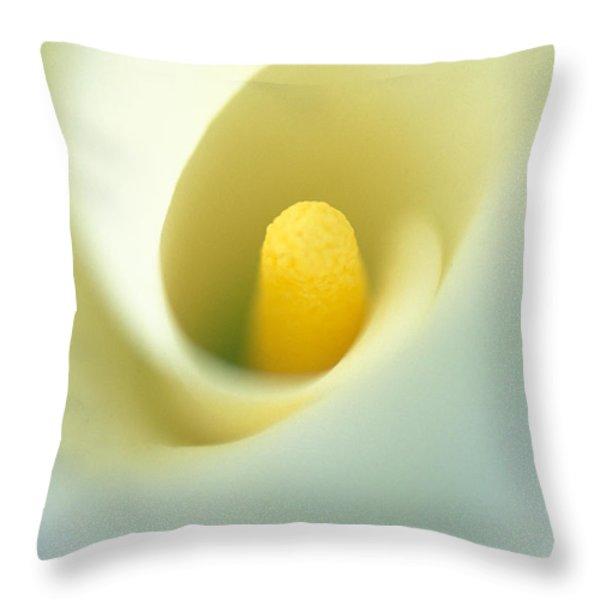Calla Throw Pillow by Kathy Yates