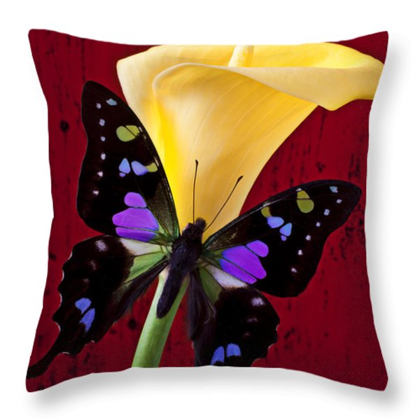 Calla lily and purple black butterfly Throw Pillow by Garry Gay