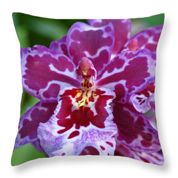 Cambria Orchid Throw Pillow by Juergen Roth