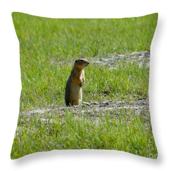 Canadian Prairie Icon Throw Pillow by Al Bourassa