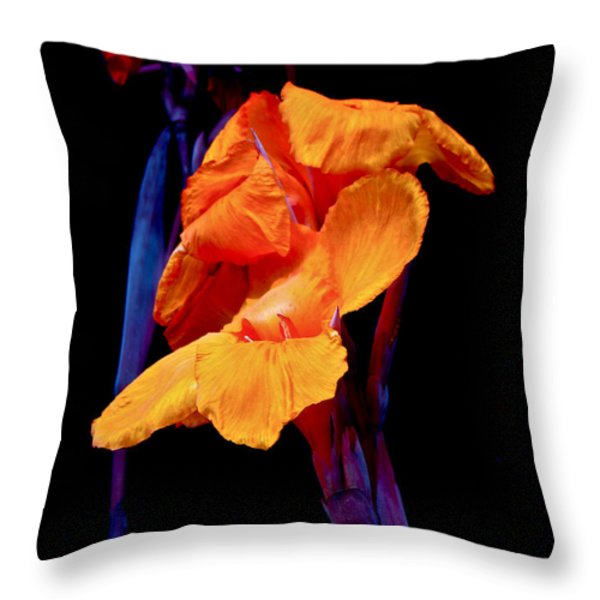 Canna Lilies on Black With Blue Throw Pillow by Mother Nature