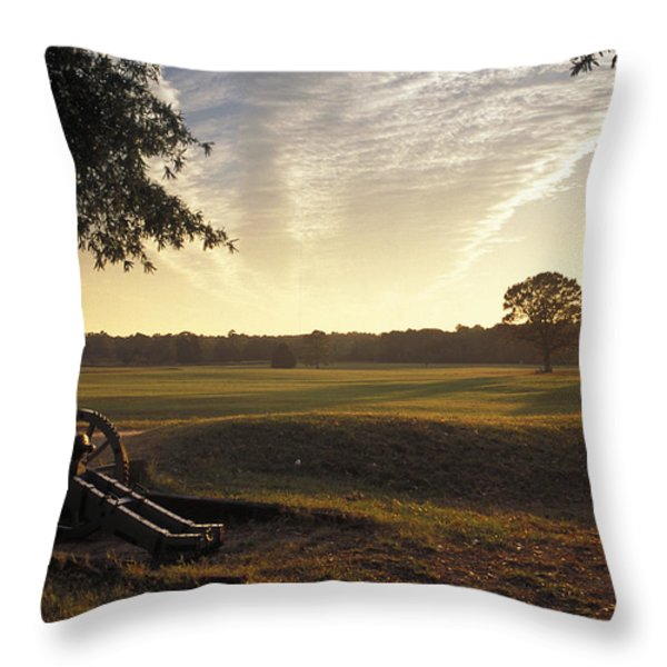 Cannons On The Battlefield Throw Pillow by Richard Nowitz