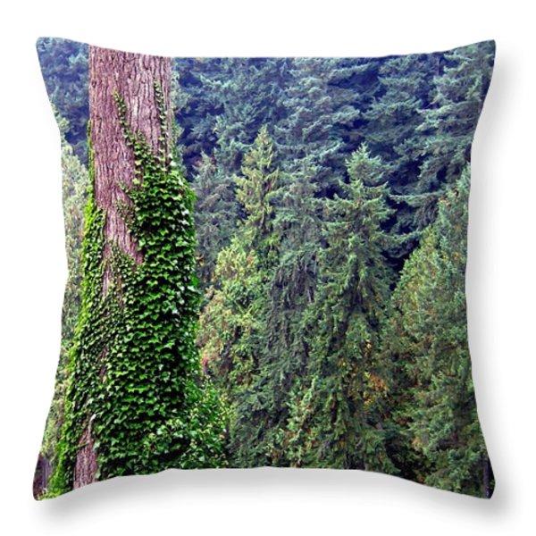Capilano Canyon Ivy Throw Pillow by Will Borden