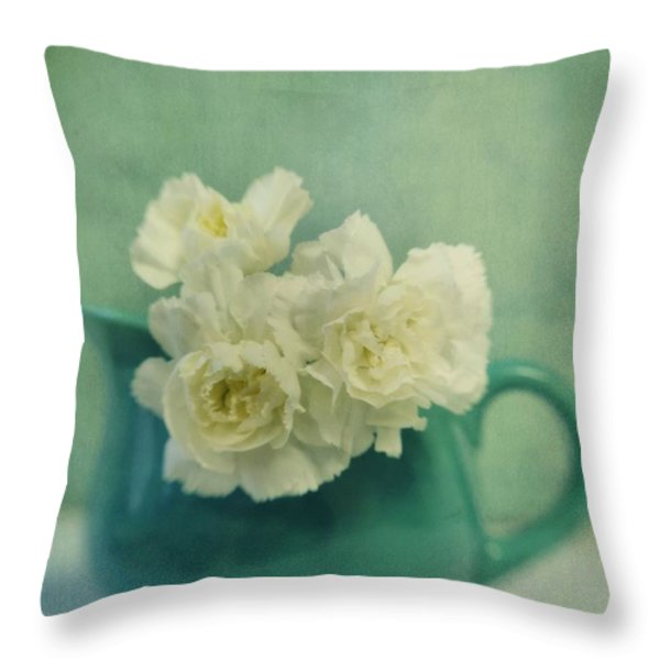 carnations in a jar Throw Pillow by Priska Wettstein