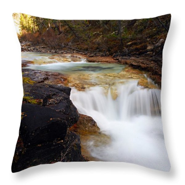 Cascade On Beauty Creek Throw Pillow by Larry Ricker