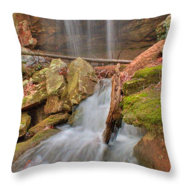 Cascading Waterfall Throw Pillow by Douglas Barnett
