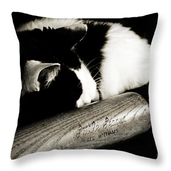 Cat and Bat Throw Pillow by Andee Design