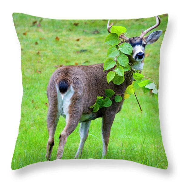 Caught in the Act Throw Pillow by Mike  Dawson