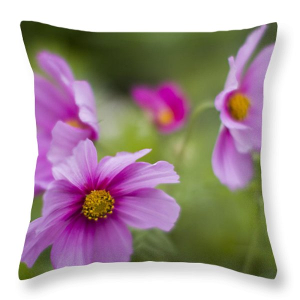 Caught In The Wind Throw Pillow by Rebecca Cozart