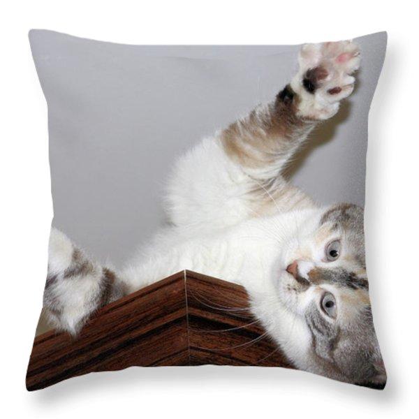 Ceiling Fairies Throw Pillow by Kristin Elmquist