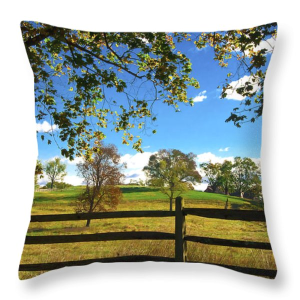 Changing Seasons Throw Pillow by Bill Cannon