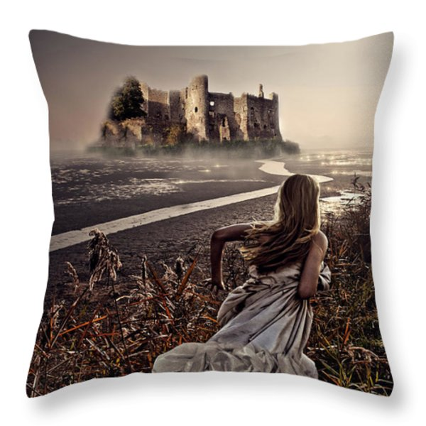 Chasing The Dreams Throw Pillow by Mo T