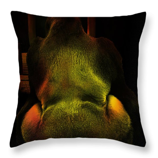 Chatroom Screen Name MildMannerGuy4U Throw Pillow by Wingsdomain Art and Photography