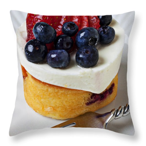 Cheese cream cake with fruit Throw Pillow by Garry Gay