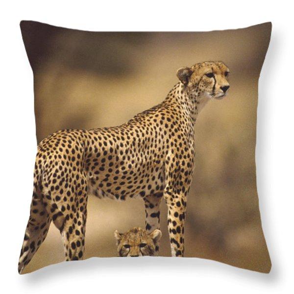 Cheetah Acinonyx Jubatus Mother With Throw Pillow by Gerry Ellis