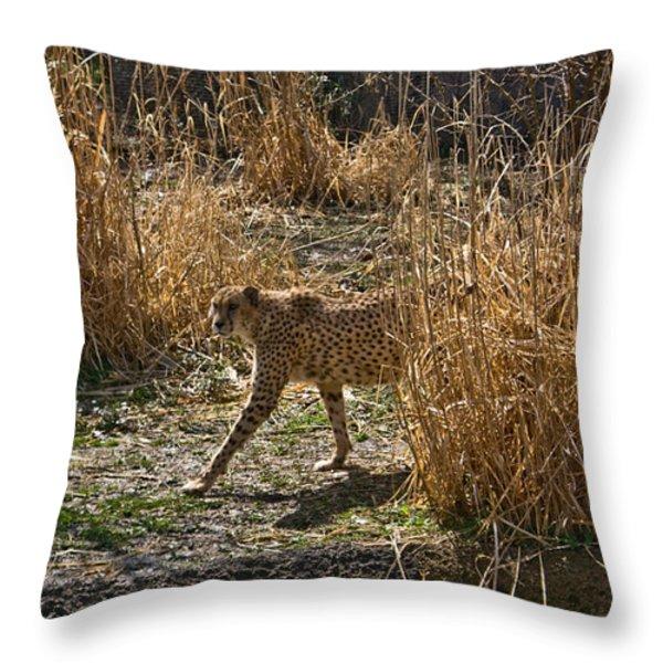 Cheetah  in the Brush Throw Pillow by Douglas Barnett