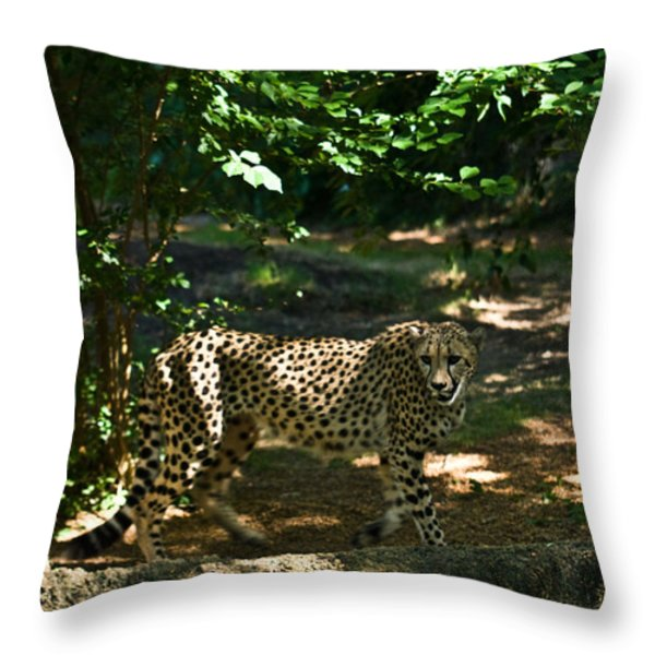 Cheetah On The In The Forest 2 Throw Pillow by Douglas Barnett