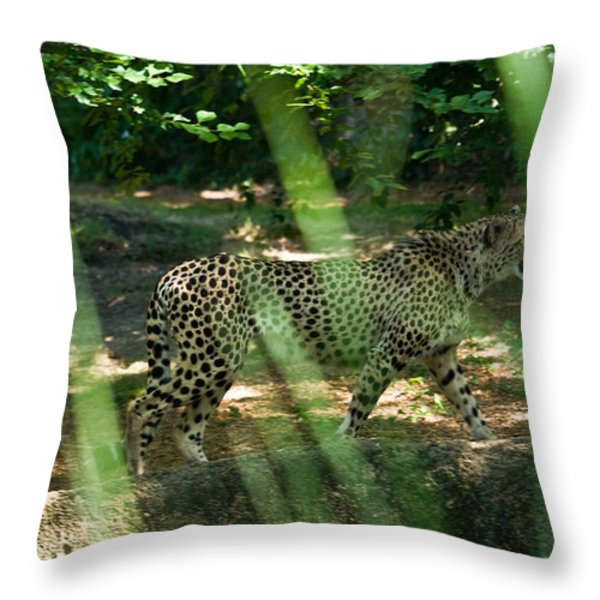 Cheetah on the in the Forest Throw Pillow by Douglas Barnett