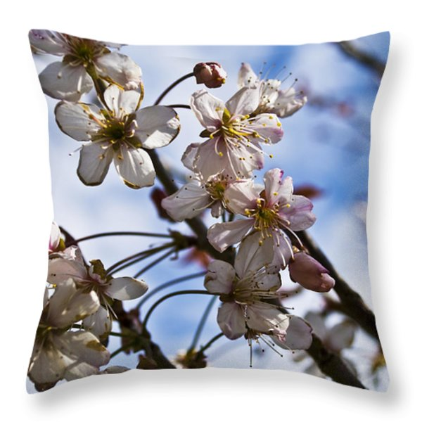 Cherry Blossom Tree Throw Pillow by Svetlana Sewell