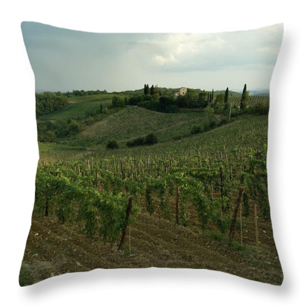 Chianti Vineyards In Tuscany Throw Pillow by Todd Gipstein