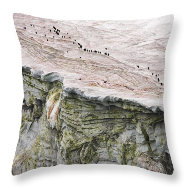 Chinstrap Penguins Crossing An Throw Pillow by Maria Stenzel