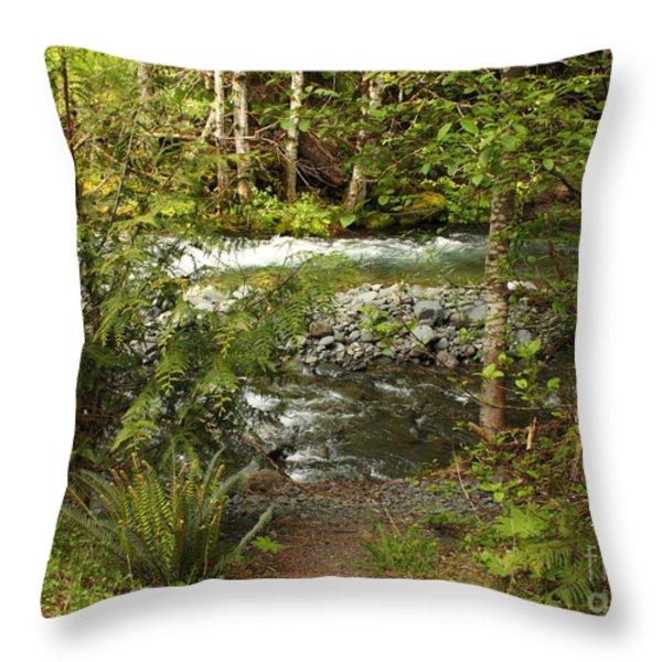 Clear Mountain Stream Throw Pillow by Carol Groenen