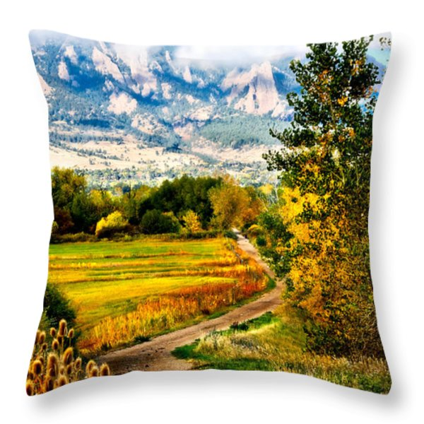 Clearly Colorado Throw Pillow by Marilyn Hunt