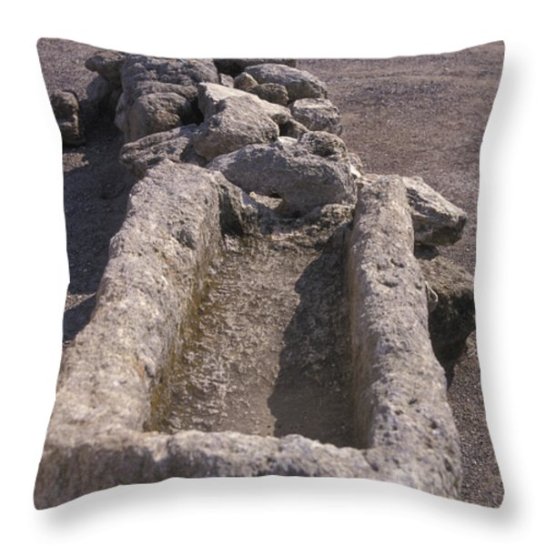 Close Up Of Excavations In The Ancient Throw Pillow by Richard Nowitz