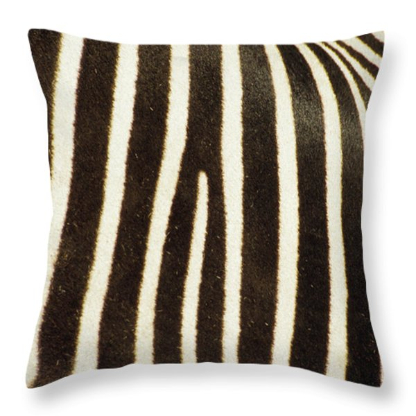 Close View Of A Zebras Stripes Throw Pillow by Stacy Gold