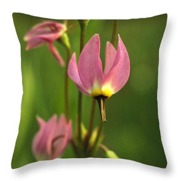 Close View Of Shooting Star Flowers Throw Pillow by Phil Schermeister