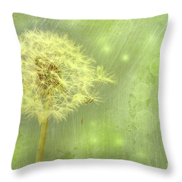 Closeup Of Dandelion With Seeds Throw Pillow by Sandra Cunningham