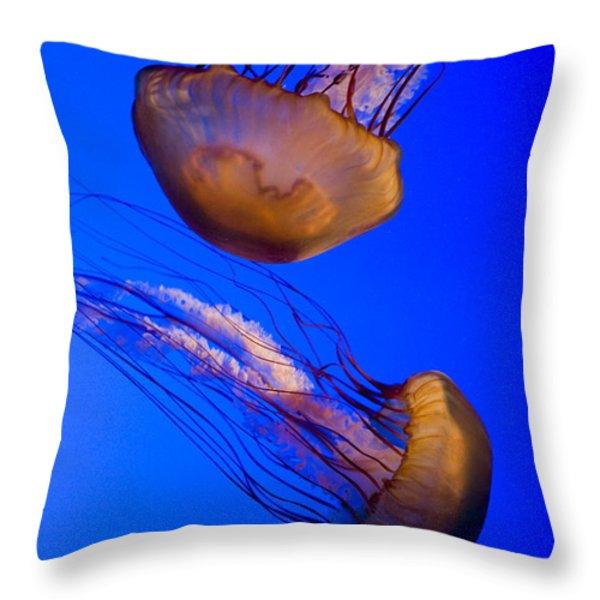 Closeup Of Two Captive Jellies Throw Pillow by Tim Laman