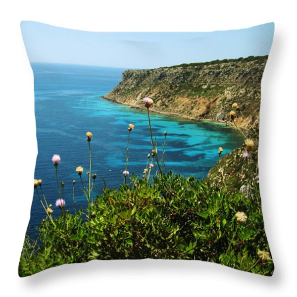 Coast Throw Pillow by Oliver Johnston