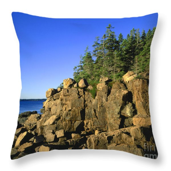 Coastal Maine Throw Pillow by John Greim