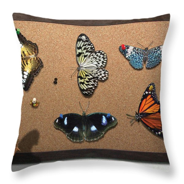 Collector - Lepidopterist - My Butterfly Collection Throw Pillow by Mike Savad