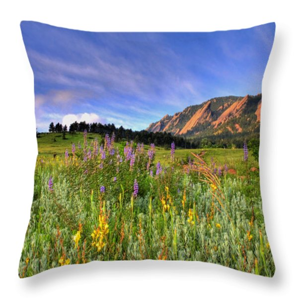Colorado Wildflowers Throw Pillow by Scott Mahon