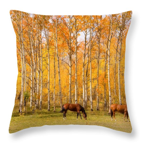 Colorful Autumn High Country Landscape Throw Pillow by James BO  Insogna